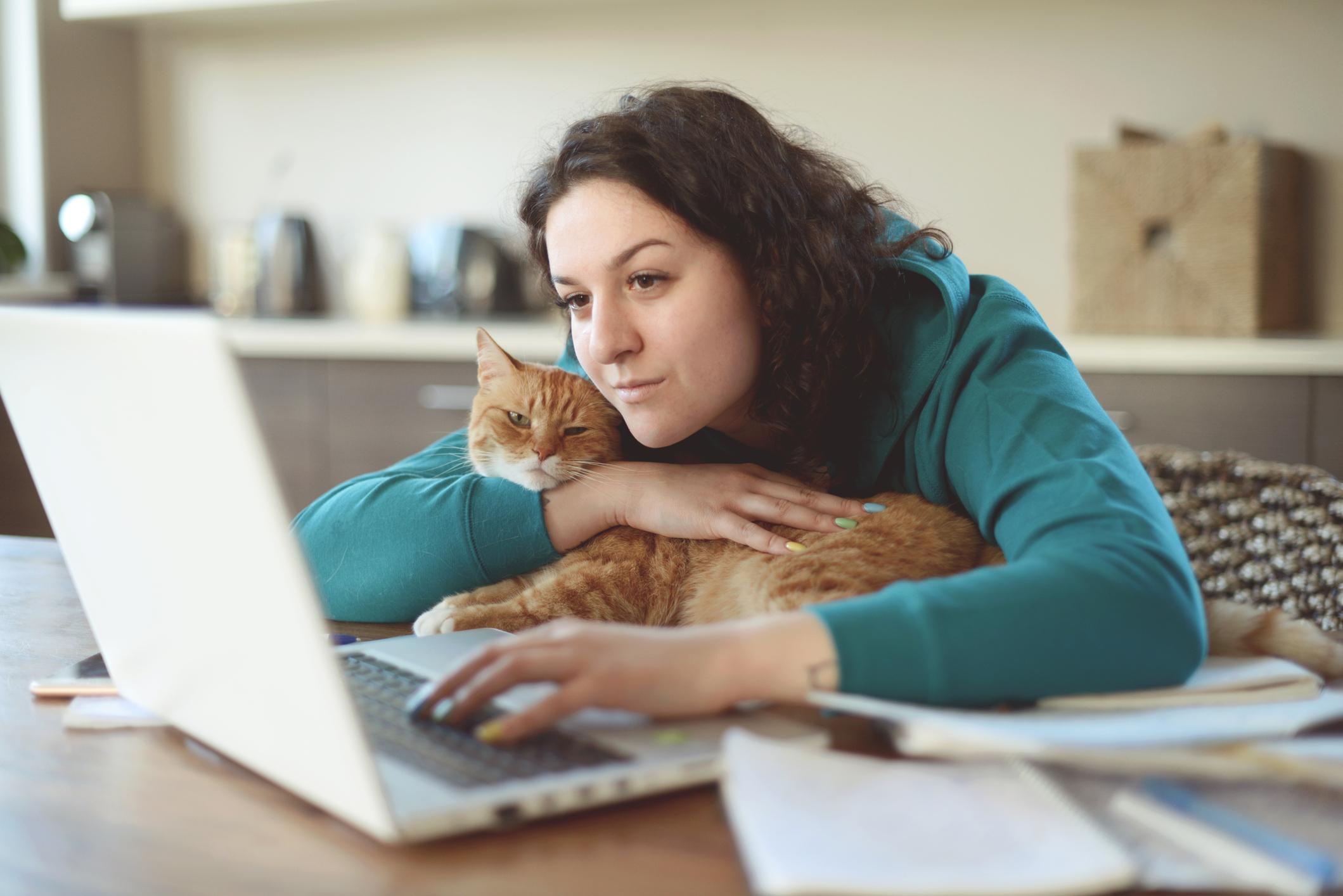 étudiante qui regarde l'ordinateur avec un chat