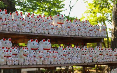 Les chats au Japon